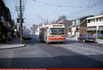 ttc-9210-sb-oakwood-holland-pk-197104.jpg