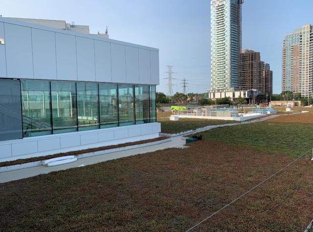 green-roof-on-top-of-kipling-bus-terminal.png