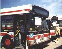 The Orion Vi Bus Transit Toronto Content