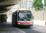 ttc-1206-36-finch-west.jpg