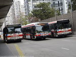 ttc-9046-three-buses-2014.jpg