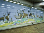ttc-art-barren-ground-caribou-spadina.jpg