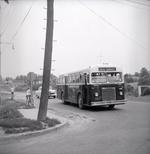 newmarket-coach-lines-1957-jvs.jpg