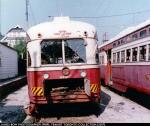 ttc-4451-wychwood-dead-1989.jpg